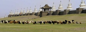 backtrack-mongolia3